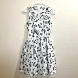 Hot Topic S Retro Style Skull Dress Knee-Length